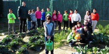 activa orihuela Bandera Verde CEIP Hurchillo