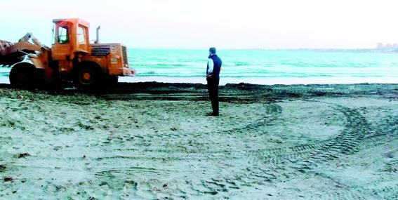 activa orihuela damaso algas playas