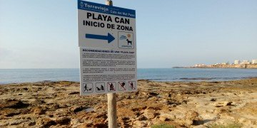 activa torrevieja playa perros